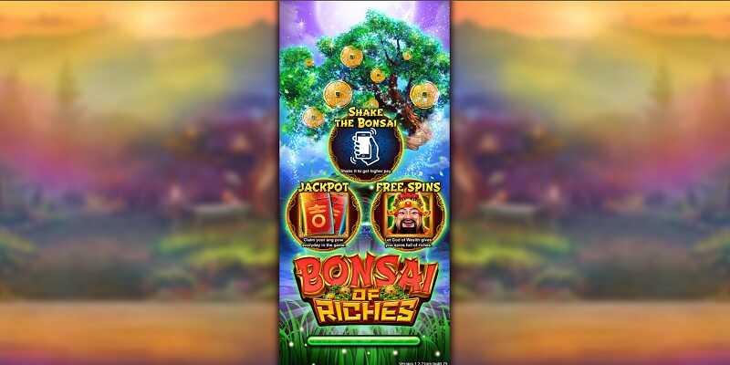 Live22 : Bonsai of Riches