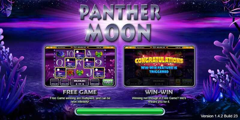 Live22 : Panther Moon