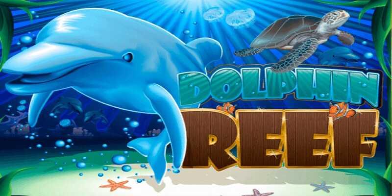 918Kiss Dolphin Reef