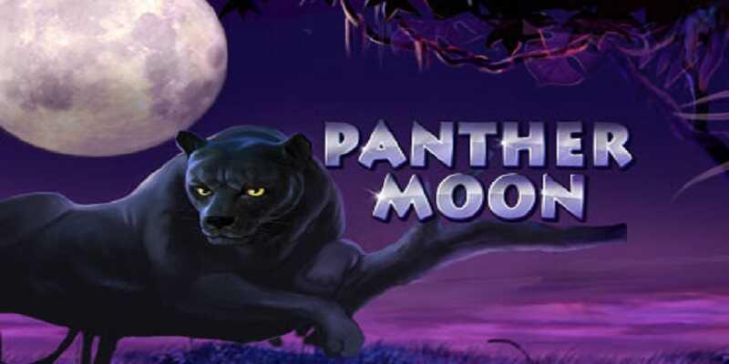 918Kiss Panther Moon