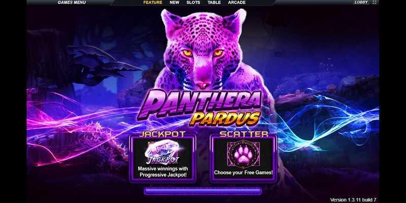 Live22 Panthera Pardus