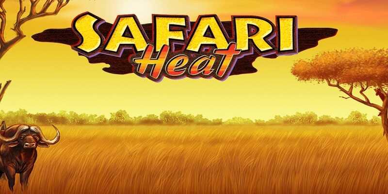 918Kiss Safari Heat
