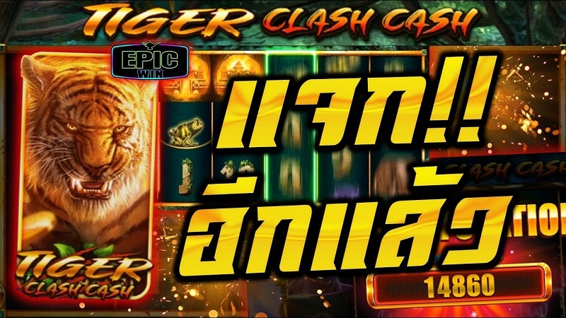 Tiger Clash Cash Epicwin